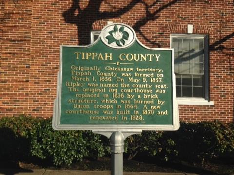 Tippah - Vicki Childers